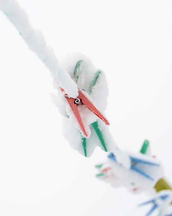 snow pegs