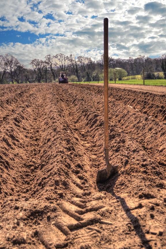 A Garden shovel